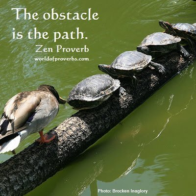 18439_Zen_proverb_obstacle_path